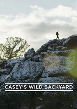 Casey's Wild Backyard